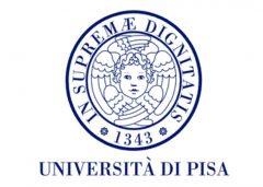 Pise University